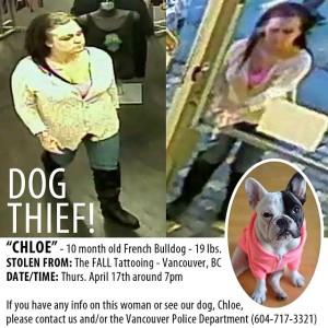 stolendog