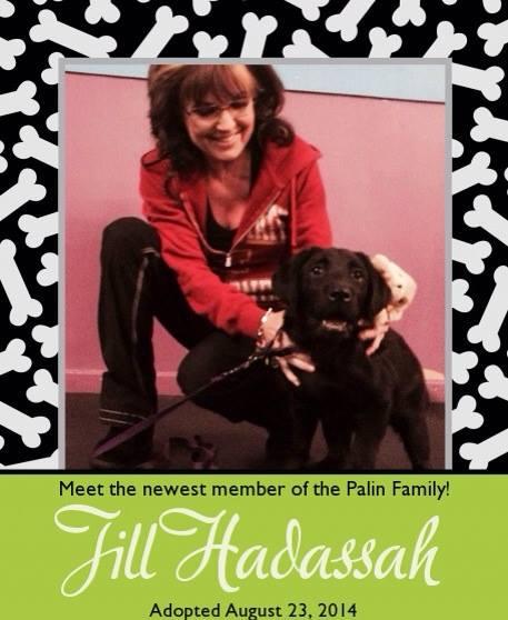 Jill Hadassah