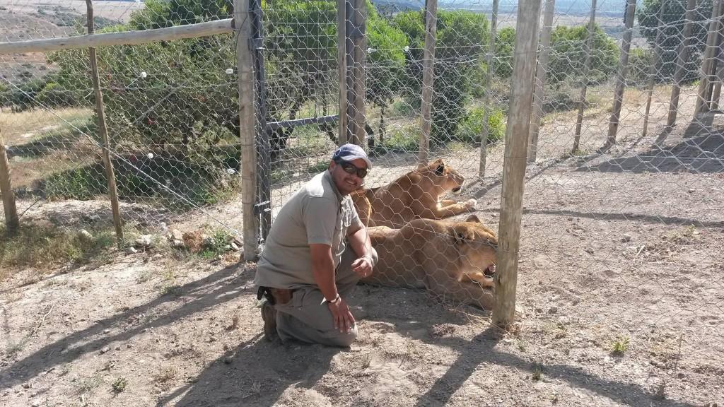 lionsenclosure