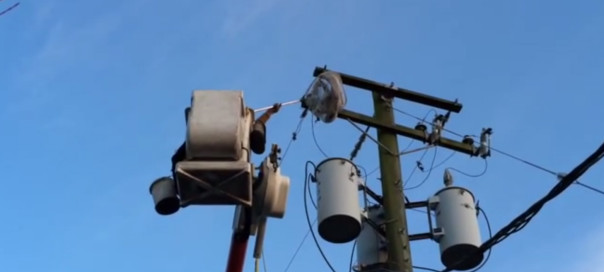 Eagle caught in power line rescued by BC Hydro crews