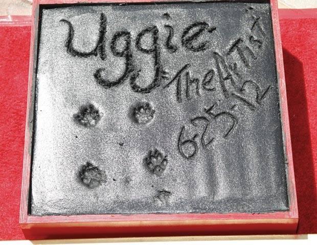 UggieWalkofFame