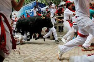 runningbulls