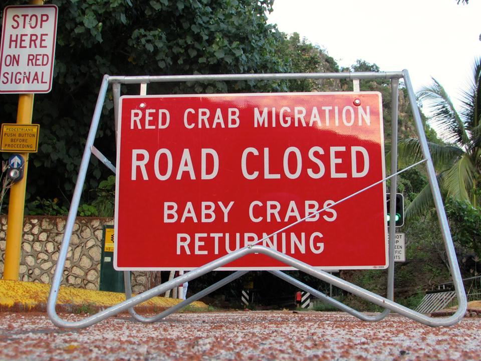 crabsroadclosure