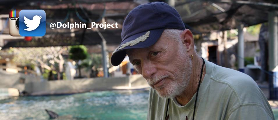 Photo from Ric O'Barry's Dolphin Project/Facebook