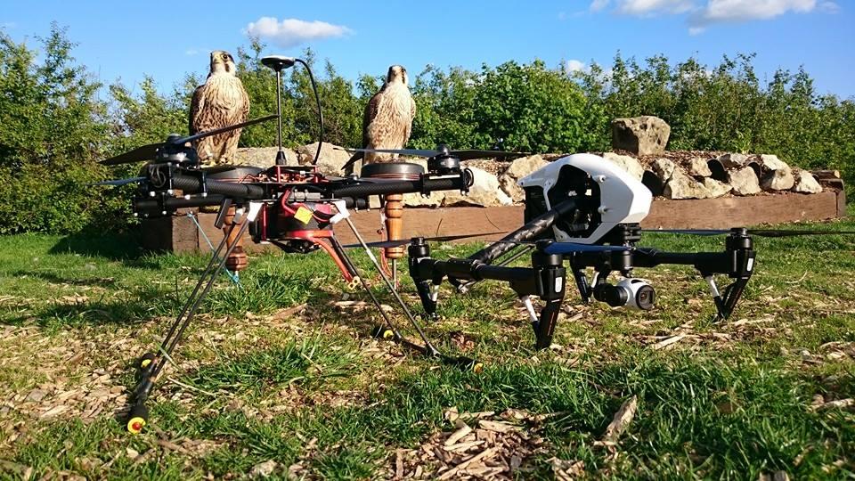 Jonny Ames drones fleet and real birds/Facebook