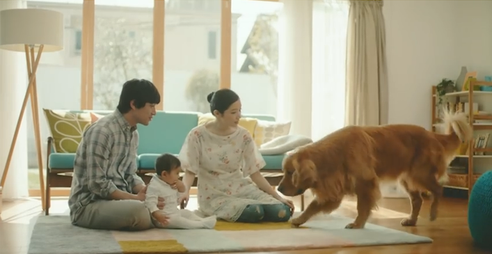 New Amazon Commercial Featuring A Woefully Sad Dog Will
