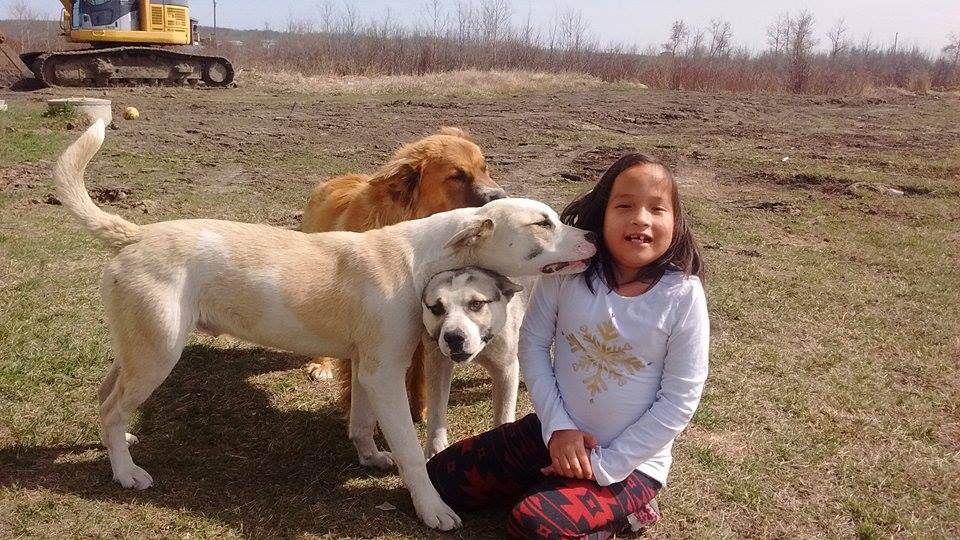 This 9-year-old girl was protected while lost in a by her dog/Submitted by family