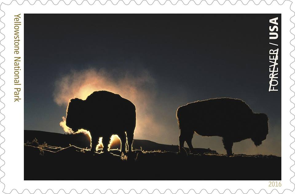 Bison and Yellowstone National Park is featured on a new U.S. stamp/Facebook