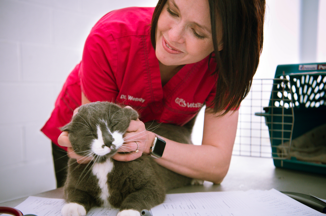 Dr. Wendy McClelland on free veterinary care day for the homeless/Aubri Poon Photography