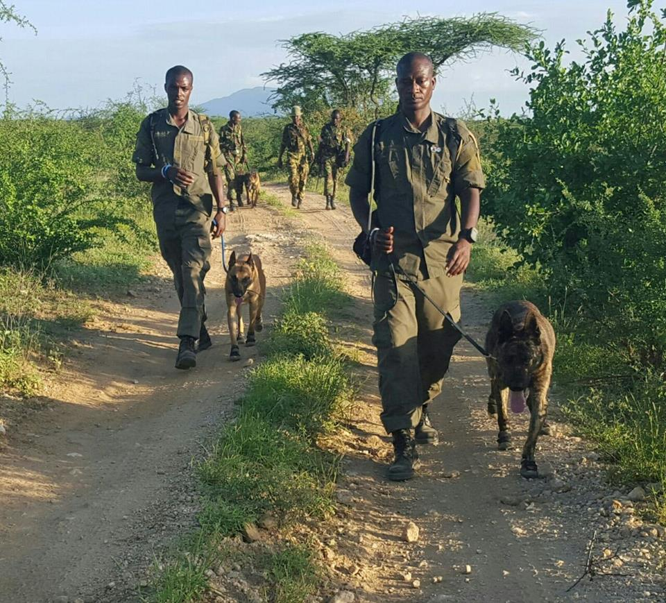 K9 members and their handlers in the anti-poaching unit of the Northern Rangelands Trust/Facebook