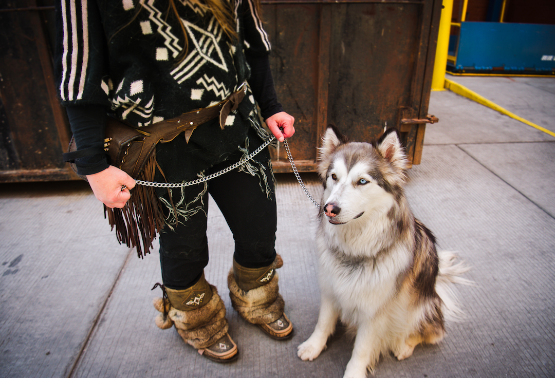 A furry client on free vet day at the Mustard Seed/Aubri Poon Photography