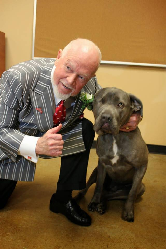 Don Cherry with a rescue dog. Don Cherry's Pet Rescue Foundation/Facebook